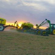 Oman corn planting