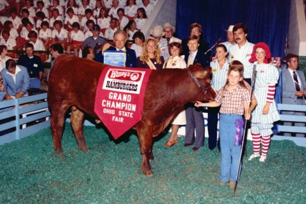 Wendy's purchased the 1981 grand champion steer exhibited by Rhonda Shane for $26,256.