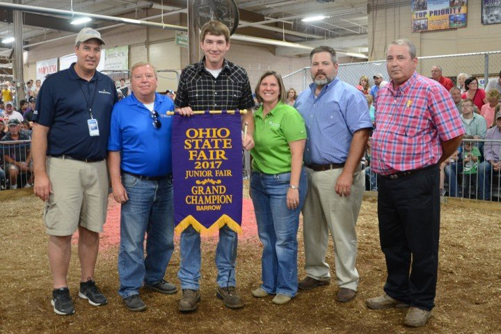 Grand Champion: Dark Crossbred, Matthew Butterfield, Oxford