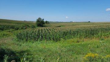 Jackson County, Iowa