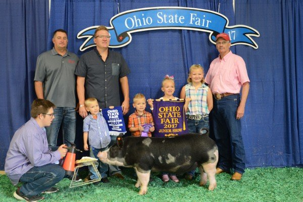The Champion Berkshire exhibited by Ava Genter of Archbold sold to Buckeye Barrow Boosters, D.A. Smith Auctioneer,  Kremer Yorkshires, and Bodey Insurance for $3,400.