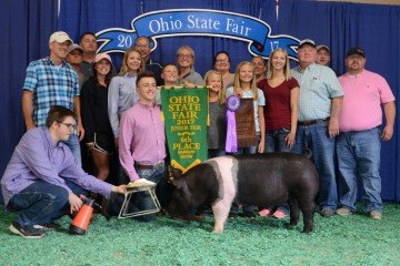 The Champion Hampshire exhibited by Mason Creager of Wauseon sold to Buckeye Barrow Boosters and United Producers for $1,400.