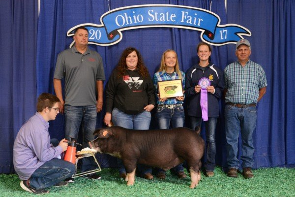 The Champion Poland China exhibited by Treanna Lavy of Pleasant Hill sold to Buckeye Barrow Boosters, Miami Valley Feed and Grain, Sunrise Co-op and Tri-Ag products for $2,050.