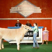 The Reserve Champion Market Beef was exhibited by Montana Hulsmeyer of Allen County and sold to Kroger for $36,000.