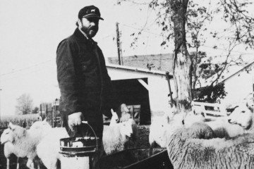 Budd Martin of Huron County and his 400-ewe flock of Cheviots, Dorsets and crossbred sheep were featured in the Livestock Section in the 1992 Vol. 1; Issue 1 OCJ.