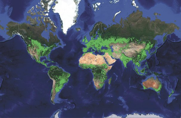 New Map Worldwide Croplands Supports Food And Water Security