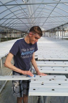 The 15,000 square foot greenhouse produced the first batch of lettuce in 2014.