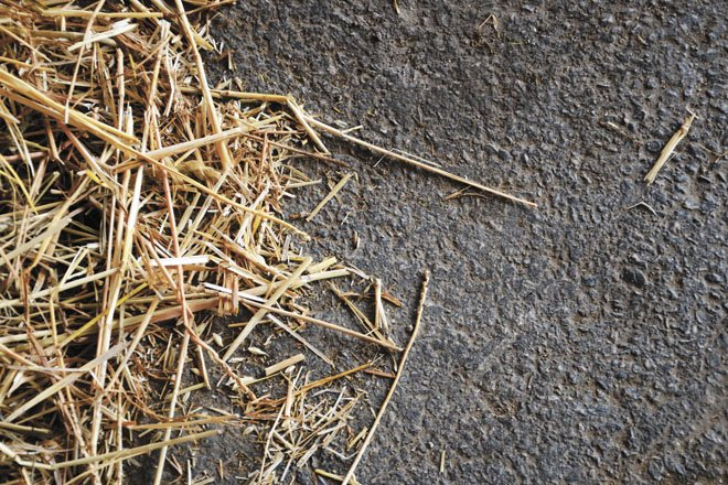 Hay production fills barns and roles on the farm – Ohio Ag Net
