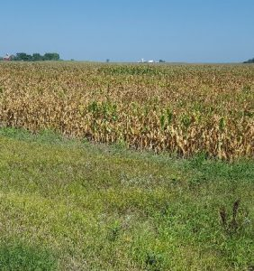 Clinton County, Iowa