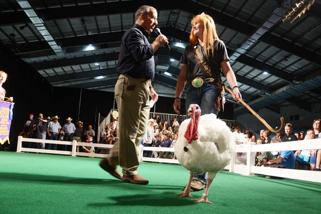 Ohio State Fair 2018 Sale Of Champions Results Ohio Ag