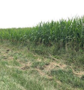 PFTour19_Day1_Stop7_IMG_3863